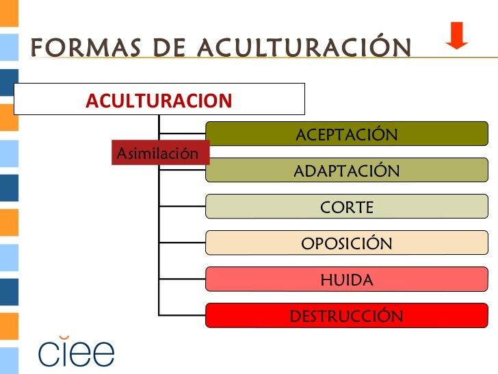 FORMAS DE ACULTURACIÓN   ACULTURACION   ACULTURACION                   ACEPTACIÓN     Asimilación                   ADAPTA...