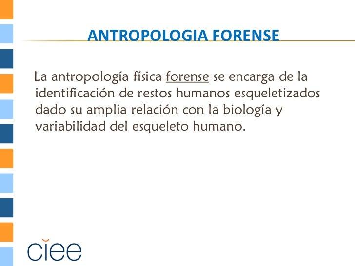 ANTROPOLOGIA FORENSELa antropología física forense se encarga de laidentificación de restos humanos esqueletizadosdado su ...