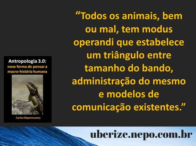 """""""Todos os animais, bem ou mal, tem modus operandi que estabelece um triângulo entre tamanho do bando, administração do mes..."""