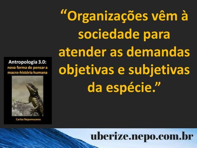 """""""Organizações vêm à sociedade para atender as demandas objetivas e subjetivas da espécie."""""""