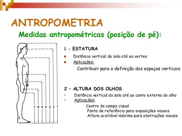Antropometria medidas antropometricas for Cuales son medidas antropometricas