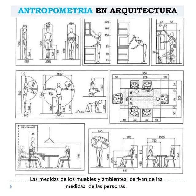 Antropometria arquitect nica for Medidas de muebles en planta