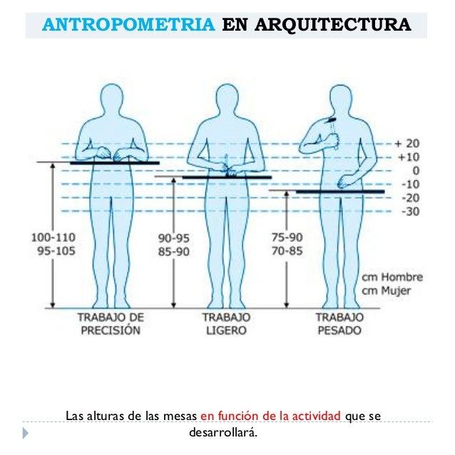 Antropometria arquitect nica for Antropometria de la vivienda pdf