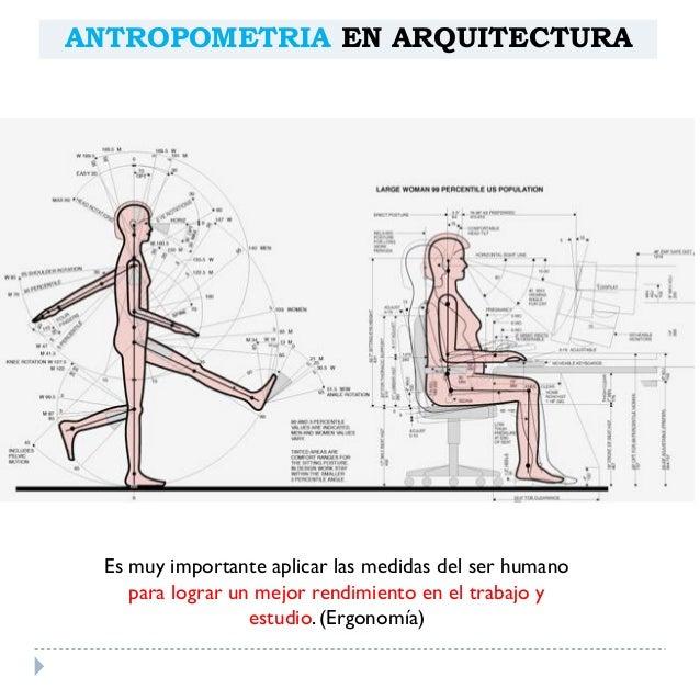 Antropometria arquitect nica for Antropometria y ergonomia