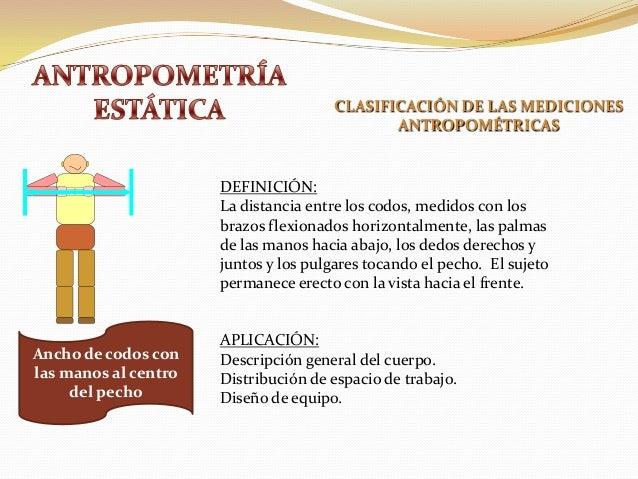 Antropometria est tica y din mica for Antropometria y ergonomia