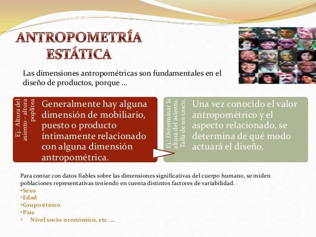 Antropometria est tica y din mica for Antropometria mobiliario