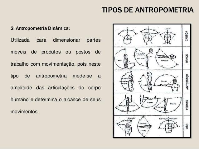 Antropometria o homem a medida das coisas for Antropometria estatica