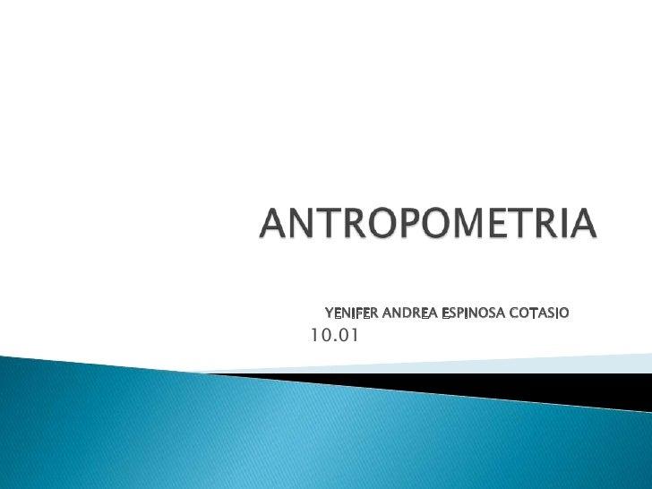 ANTROPOMETRIA<br />YENIFER ANDREA ESPINOSA COTASIO<br />10.01<br />