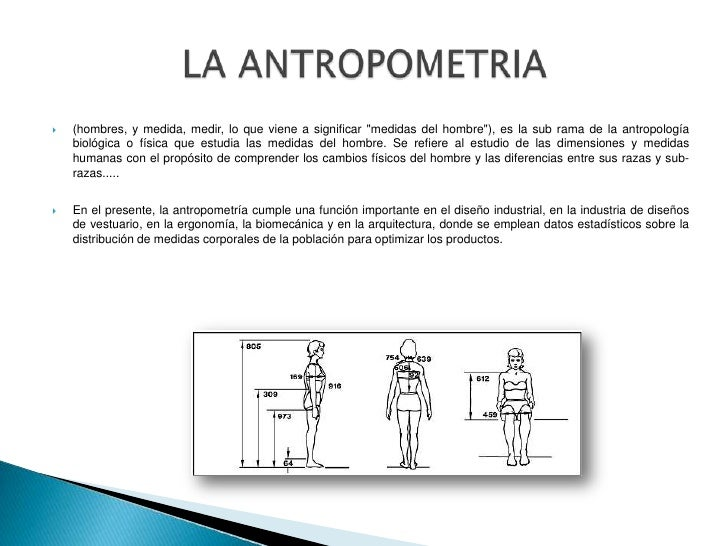 Antropometria for Cuales son medidas antropometricas