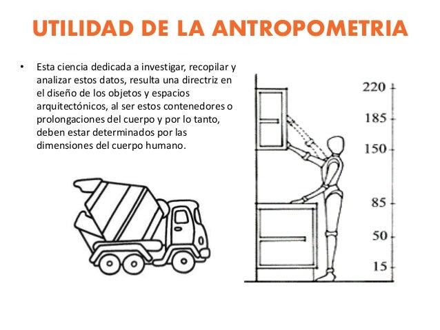 Antropometria y ergonometria for Antropometria y ergonomia