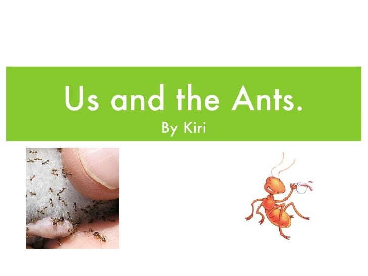 Us and the Ants.       By Kiri