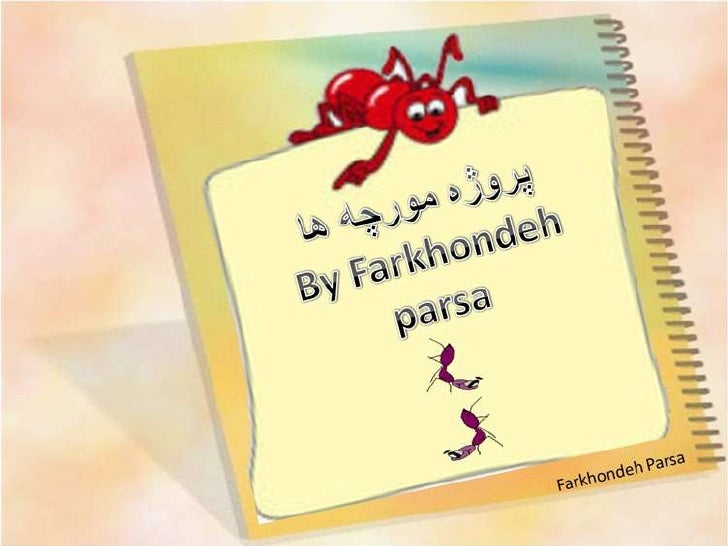 Ants Life Story -6