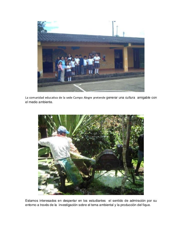 La comunidad educativa de la sede Campo Alegre pretende generar una cultura  amigable con el medio ambiente.<br />Estamos ...