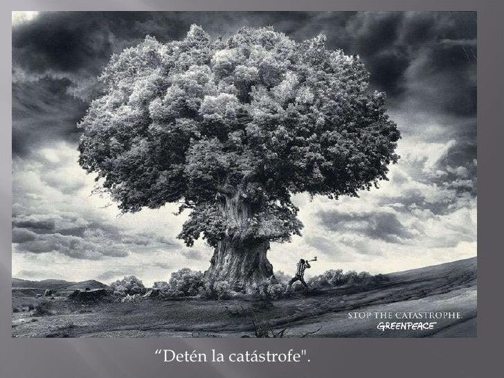 """"""" Detén la catástrofe""""."""
