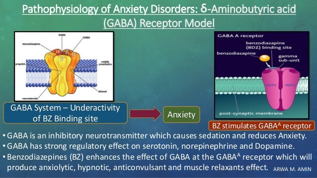 ARWA M. AMIN Pathophysiology of Anxiety Disorders: δ-Aminobutyric acid (GABA) Receptor Model • GABA is an inhibitory neuro...