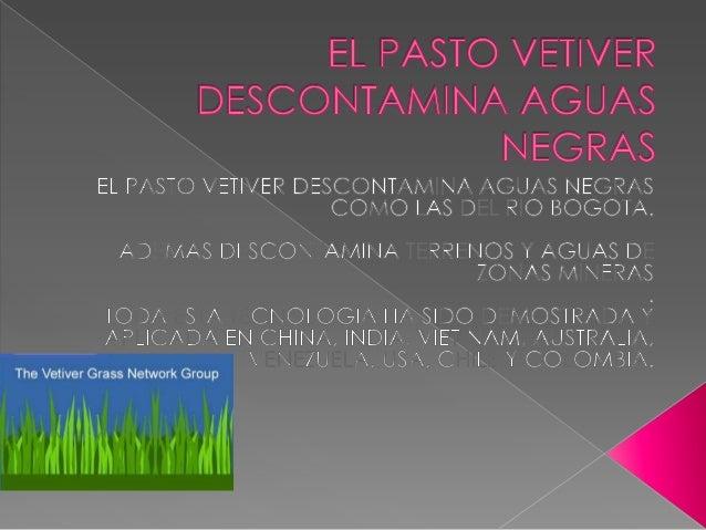 PROYECTO- DESCONTAMINACION RIO BOGOTA- COLOMBIA