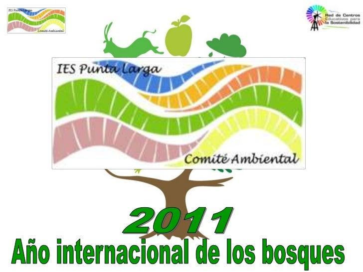 2011<br />Año internacional de los bosques<br />