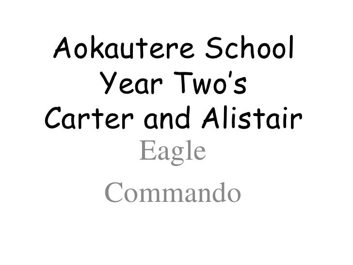 Aokautere School Year Two'sCarter and Alistair<br />Eagle <br />Commando <br />