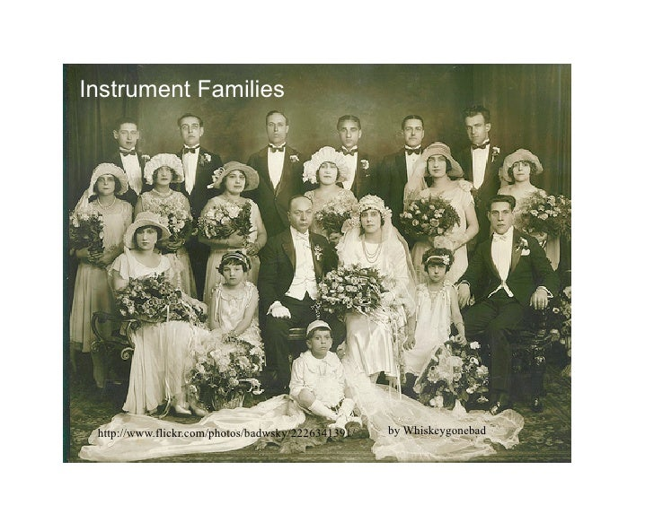 Instrument Families      http://www.flickr.com/photos/badwsky/2226341391/   by Whiskeygonebad