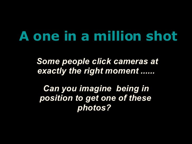 A one in a million shot Some people click cameras at exactly the right moment ...... Can you imagine  being in position to...