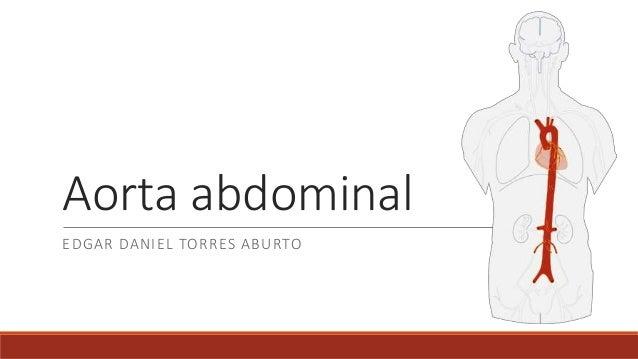 Anatomia aorta abdominal