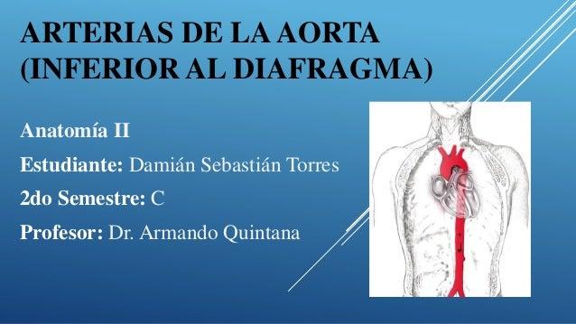 Aorta abdominal
