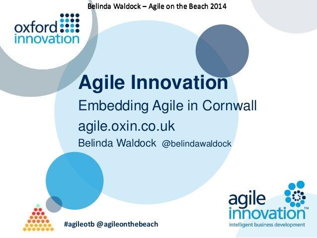 BBeelliinnddaa WWaallddoocckk –– AAggiillee oonn tthhee BBeeaacchh 22001144  Agile Innovation  Embedding Agile in Cornwall...