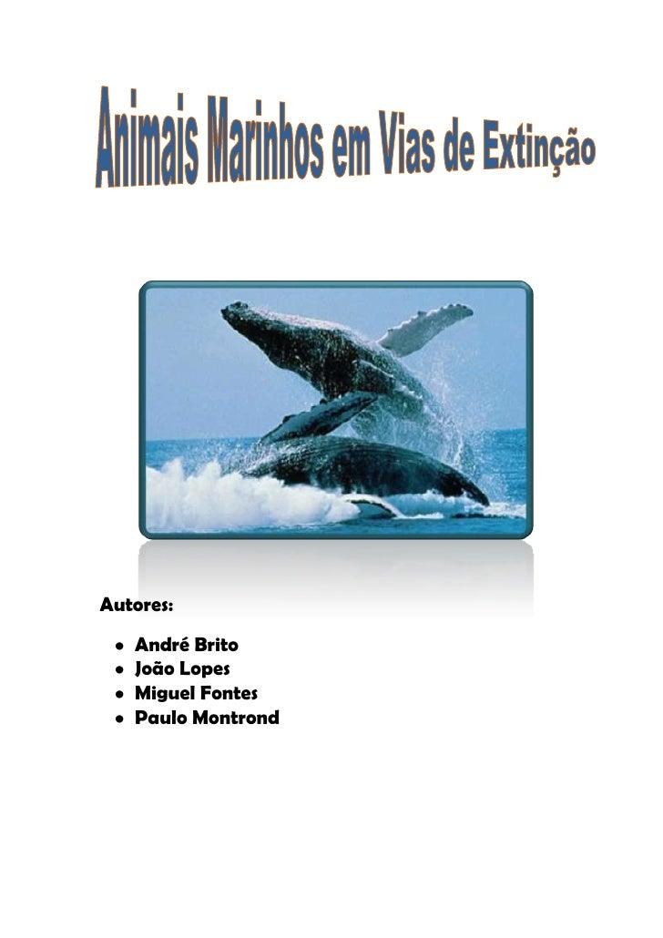548640175895<br />        <br /> Autores:                   <br />André Brito <br />João Lopes<br />Miguel Fontes<br />Pau...