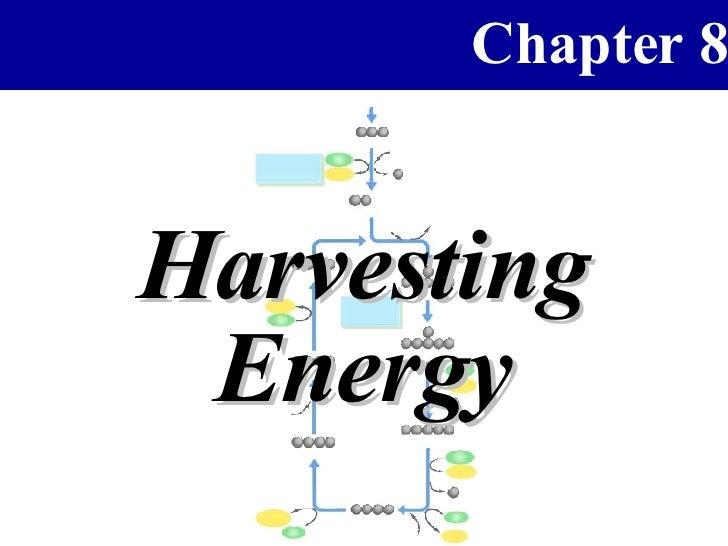 Chapter 8   Harvesting  Energy