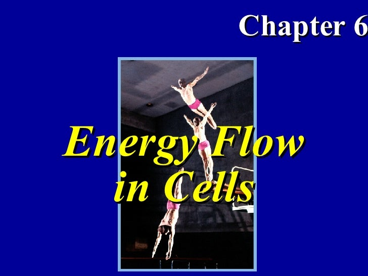 Energy Flow in Cells