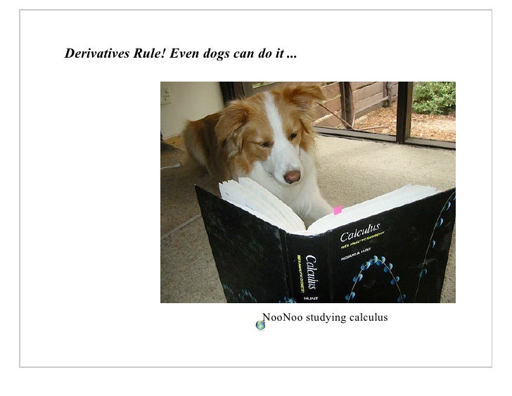 Derivatives Rule! Even dogs can do it ...                                       NooNoo studying calculus