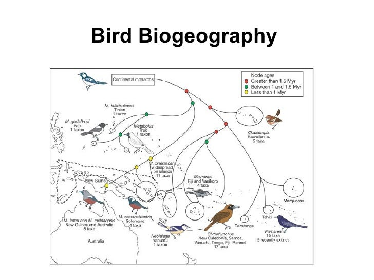 Ap Chapter 22 Mechanisms Of Evolution