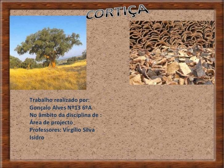 Trabalho realizado por: Gonçalo Alves Nº13 6ºA No âmbito da disciplina de : Área de projecto Professores: Virgílio Silva I...