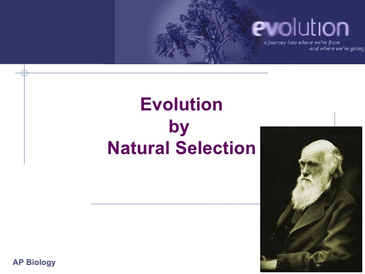 ap biology darwin evolution essay