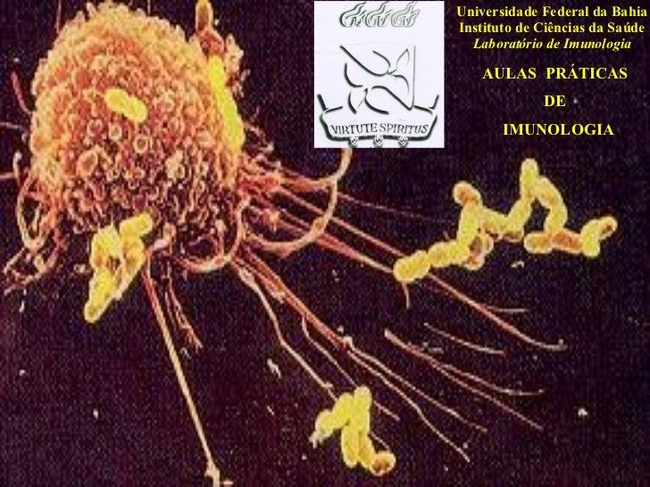 AULAS  PRÁTICAS  DE IMUNOLOGIA Universidade Federal da Bahia Instituto de Ciências da Saúde Laboratório de Imunologia