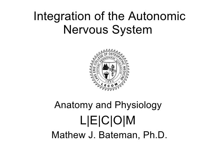 Integration of the Autonomic Nervous System  Anatomy and Physiology  L | E | C | O | M  Mathew J. Bateman, Ph.D.