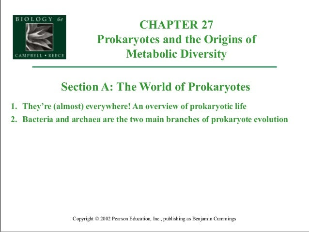 CHAPTER 27 Prokaryotes and the Origins of Metabolic Diversity Copyright © 2002 Pearson Education, Inc., publishing as Benj...