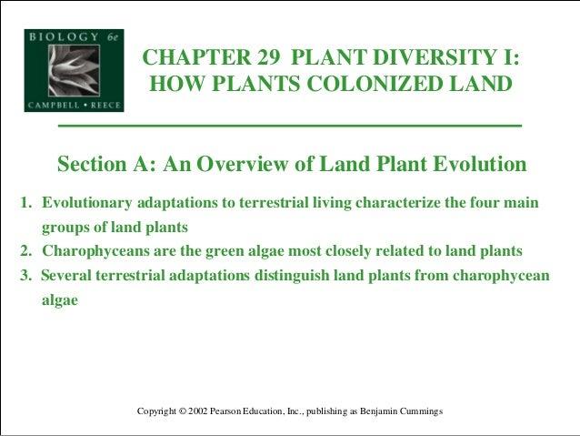 CHAPTER 29 PLANT DIVERSITY I: HOW PLANTS COLONIZED LAND Copyright © 2002 Pearson Education, Inc., publishing as Benjamin C...