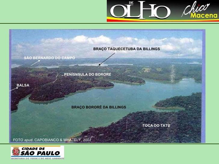 FOTO  apud.  CAPOBIANCO & WHATELY, 2002 TOCA DO TATU PENÍSNSULA DO BORORÉ BRAÇO BORORÉ DA BILLINGS BRAÇO TAQUECETUBA DA BI...