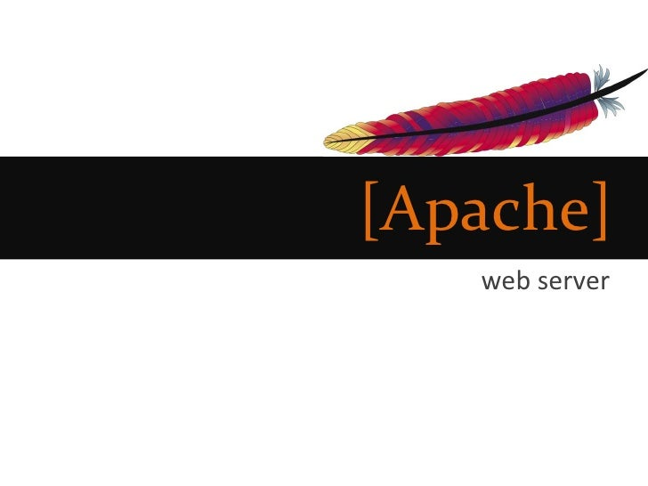 [Apache]    web server