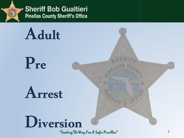 Adult Pre Arrest Diversion 1