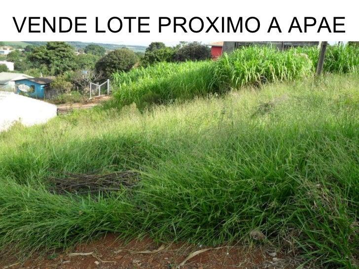 VENDE LOTE PROXIMO A APAE