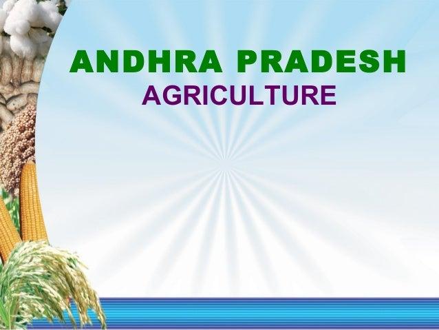 1 1 ANDHRA PRADESH AGRICULTURE