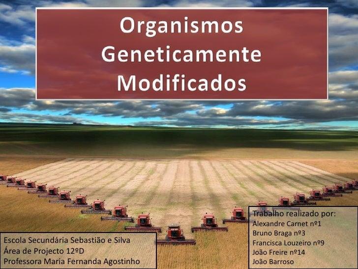 Organismos Geneticamente Modificados<br />Trabalhorealizado por:<br />Alexandre Carnet nº1<br />Bruno Braga nº3<br />Franc...