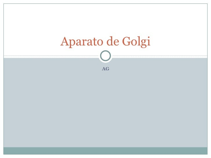 AG Aparato de Golgi
