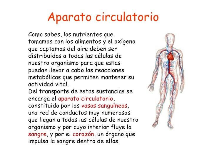 Aparato circulatorio Como sabes, los nutrientes que tomamos con los alimentos y el oxígeno que captamos del aire deben ser...