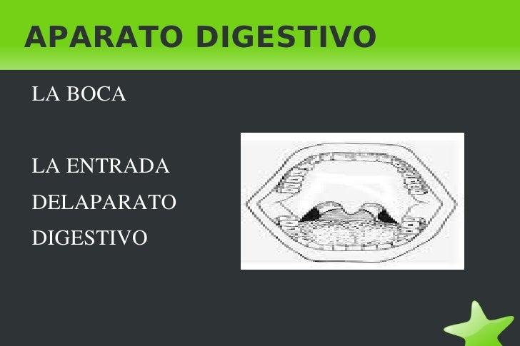 APARATO DIGESTIVO <ul>LA BOCA <li>LA ENTRADA