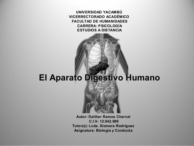 UNIVERSIDAD YACAMBÚ VICERRECTORADO ACADÉMICO FACULTAD DE HUMANIDADES CARRERA: PSICOLOGÍA ESTUDIOS A DISTANCIA Autor: Dalth...