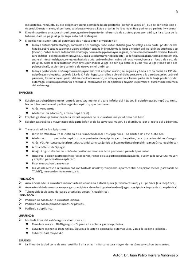 ANATOMÍA DEL APARATO DIGESTICO