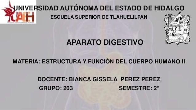 UNIVERSIDAD AUTÓNOMA DEL ESTADO DE HIDALGO ESCUELA SUPERIOR DE TLAHUELILPAN APARATO DIGESTIVO MATERIA: ESTRUCTURA Y FUNCIÓ...